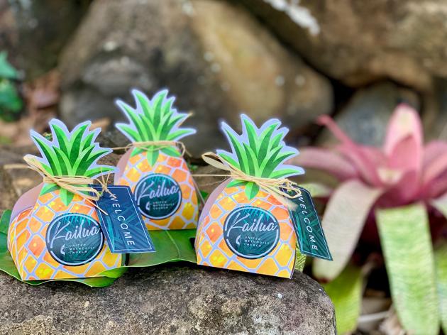Honolulu Cookie Welcome Pineapples